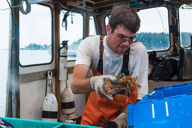 20130912-lobster-thekid.jpg