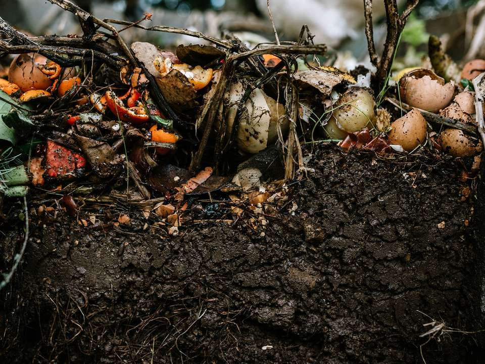 Assorted vegetable, fruit, yard clippings, and other things turn into nutrient rich and fertile soil for gardening and planting.