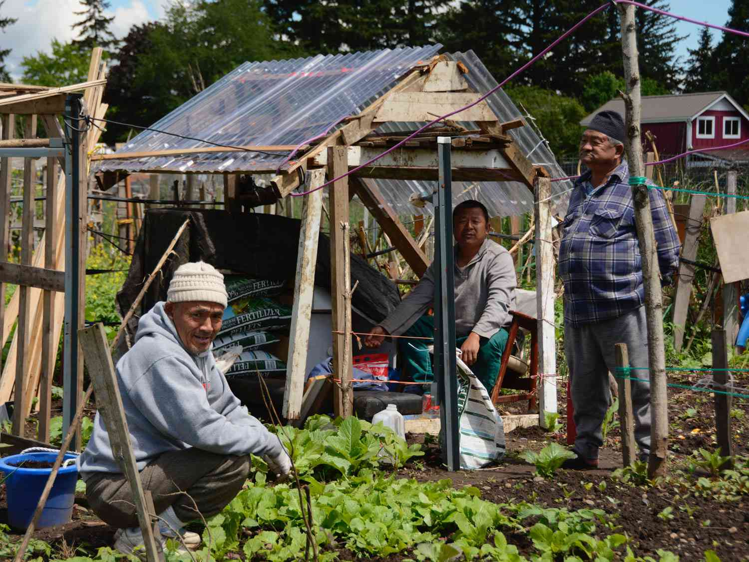 Gardeners gathering in and around a lean-to in their community garden in Portland, Oregon.