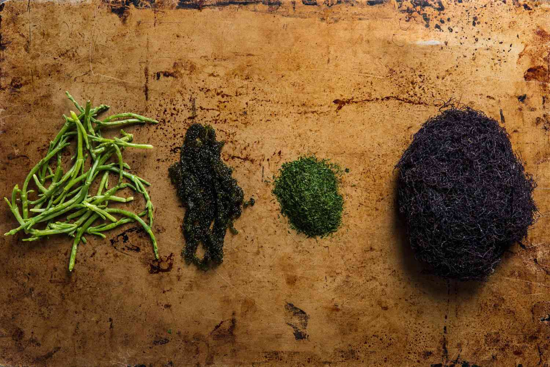 Four unusual seaweeds: sea beans, sea grapes, ao-nori, and ogo-nori