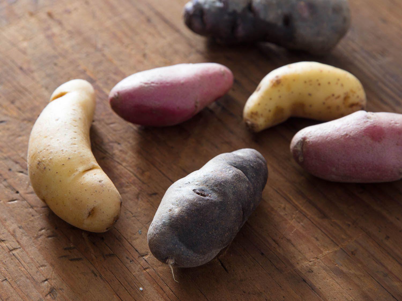 20171031-potato-varieties-vicky-wasik-fingerlings-2.jpg