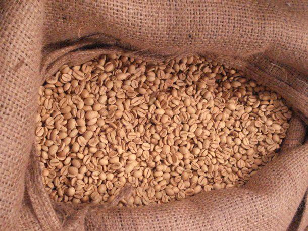 20110217-green-beans-main.jpg