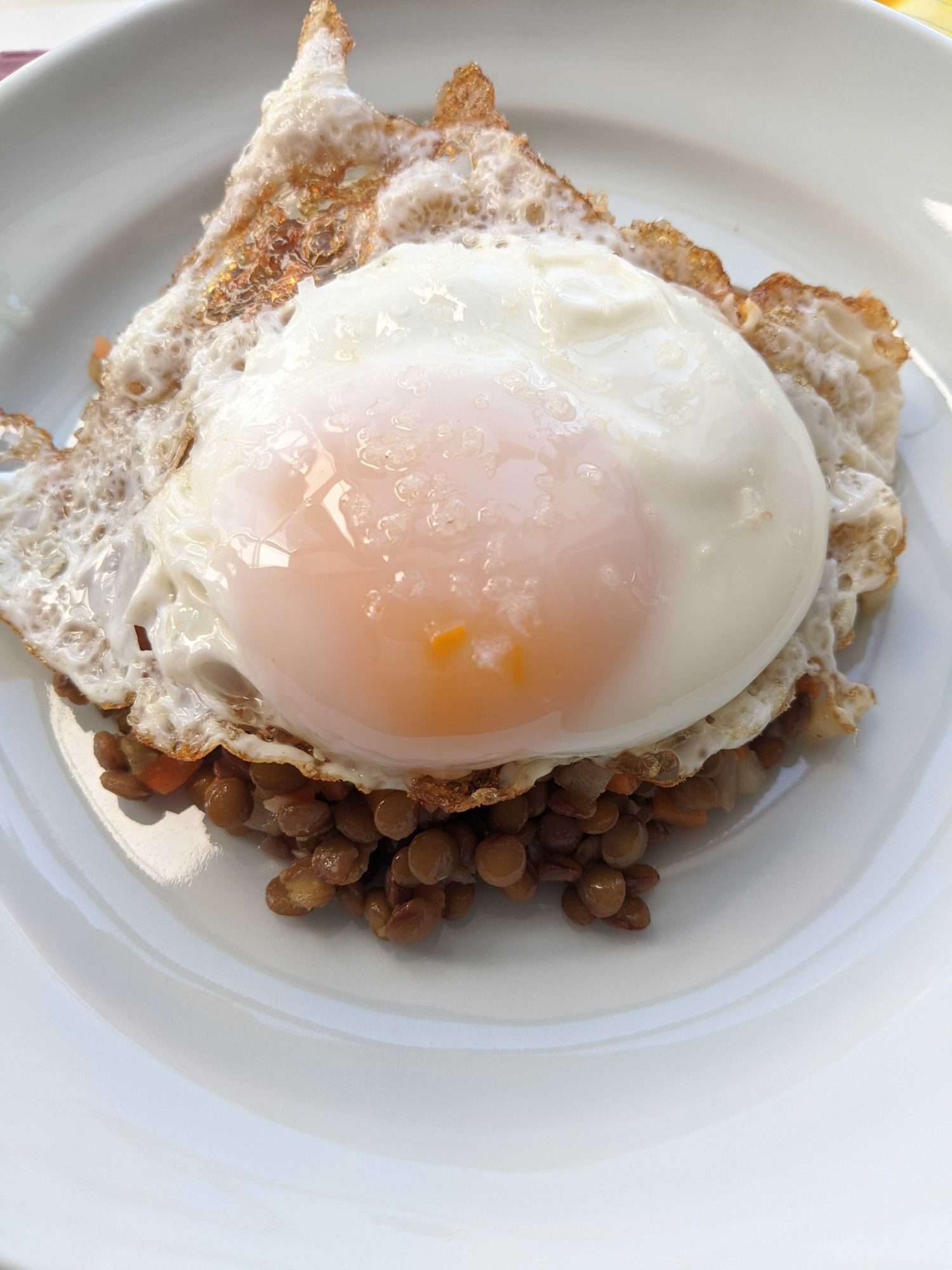 A fried egg on top of a pile of lentil salad