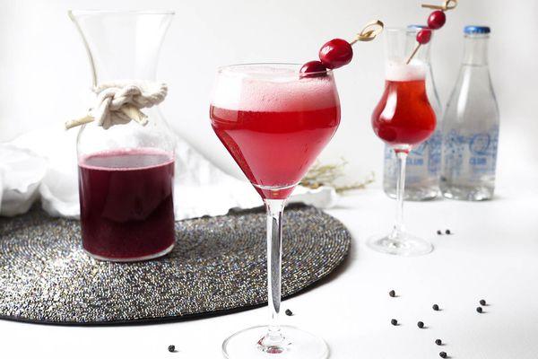 20150915-CranberryBlackPepperShrubCocktail-cocktails-ElanaLepkowski.jpg