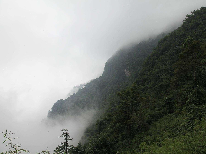 20140627-emei-shan-45.jpg