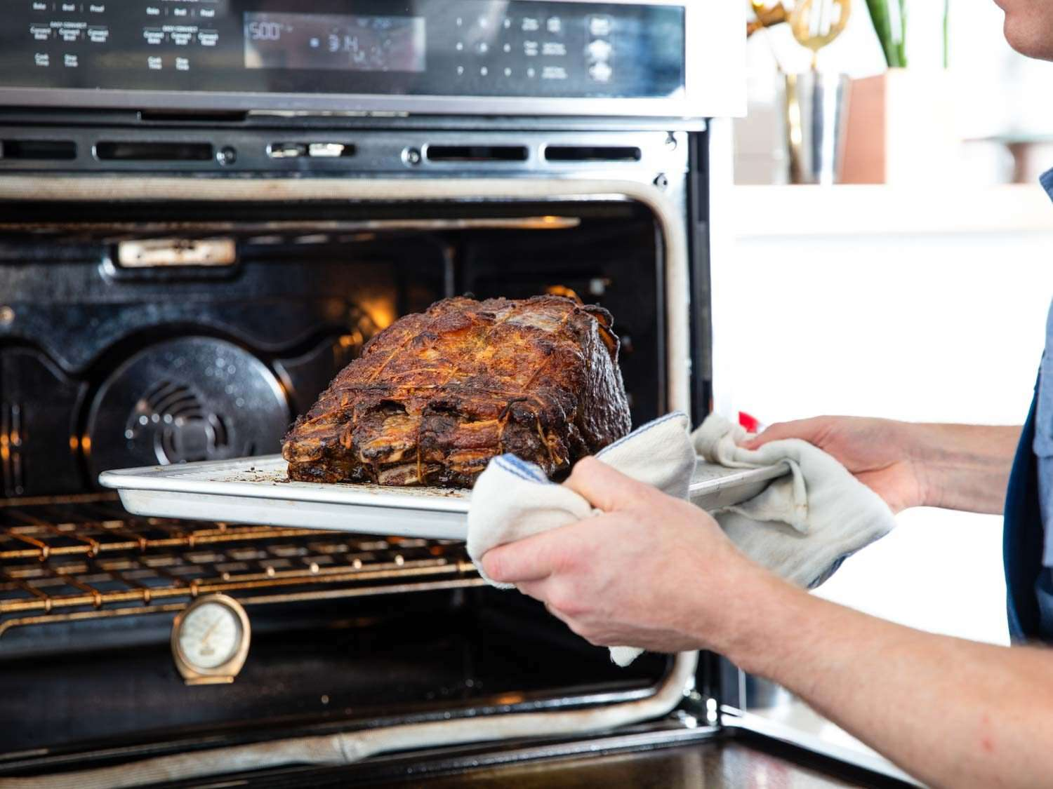 A prime rib roast getting pulled out of the oven using a kitchen towel to hold the tray