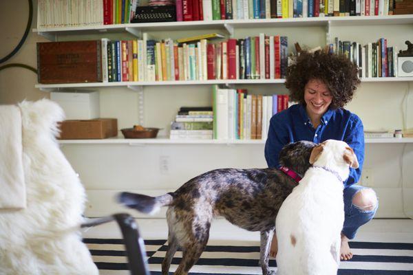 Julia Turshen in office w dogs. CREDIT DAVID LOFTUS.jpg