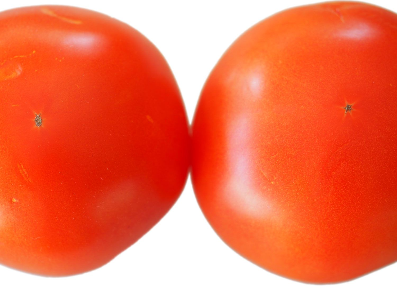 20140719-tomato-test-large-tomatoes-daniel-gritzer.JPG