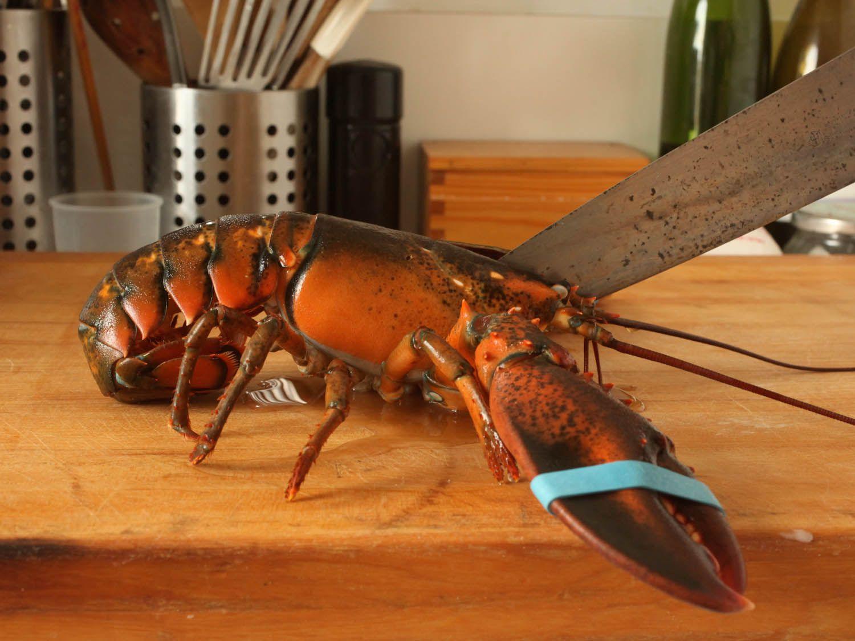 20110618-wicked-good-lobster-rolls-jkenjilopezalt-2.jpg