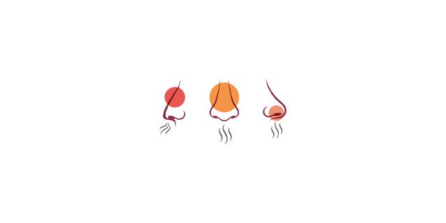 an illustration depicting different sense of smell