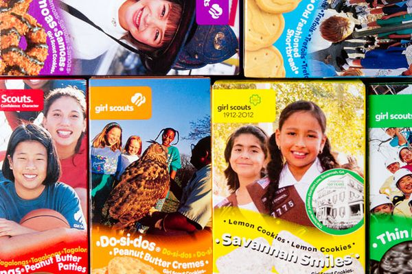 20120316-girl-scout-cookies-boxes-primary.jpg
