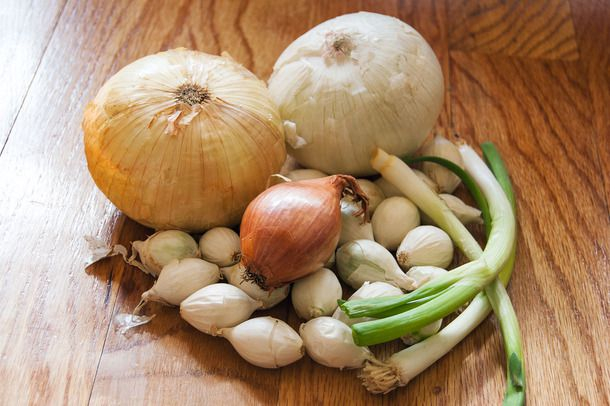 20140519-onion-guide-group.jpg