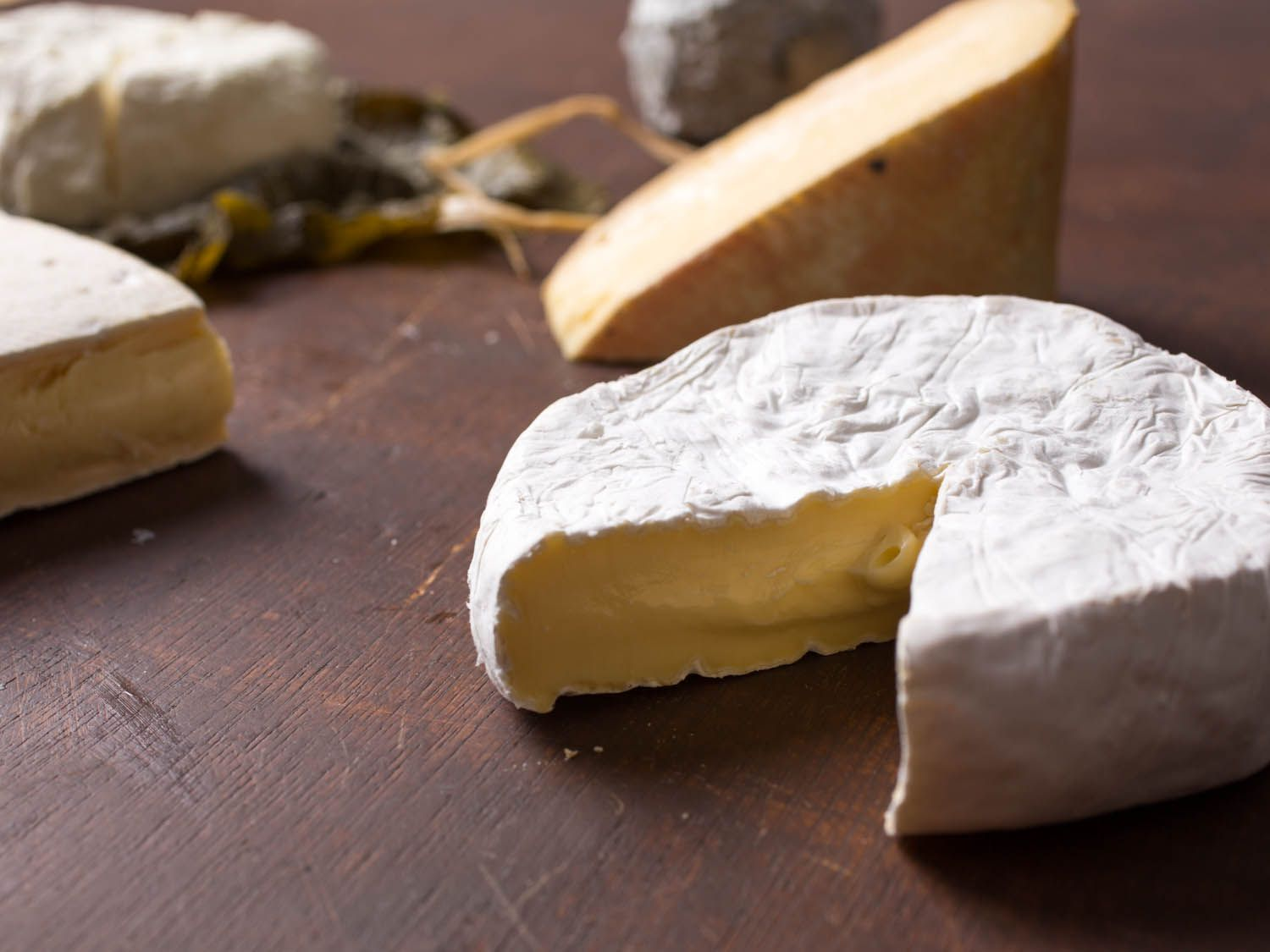 20141021-cheese101-southern-cheese-vicky-wasik-17.jpg