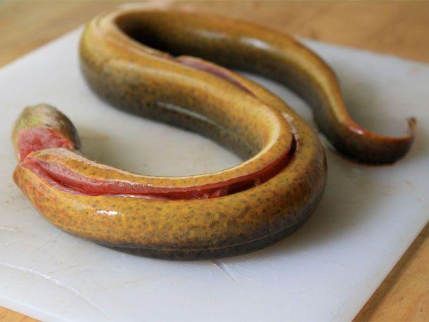20110503-roasted-eel-primary.jpg