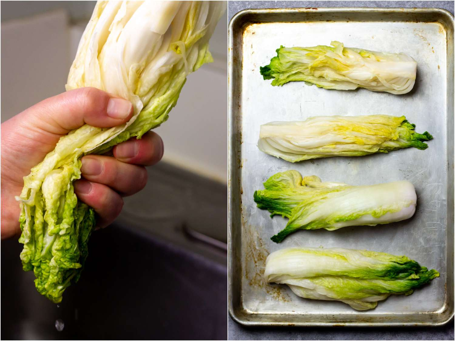 collage: a hand squeezing the liquid out of rinsed cabbage; 4 wet quarters of cabbage on a sheet tray