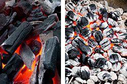 20100426-charcoal.jpg