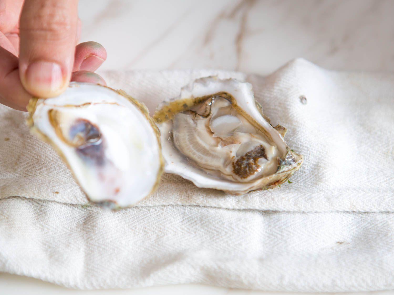 20151102-oyster-shucking-vicky-wasik-9.jpg