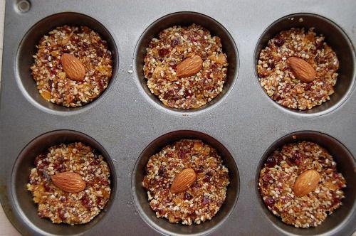 20101223-129430-apricot-cranberry-pan-de-higo-1.jpg