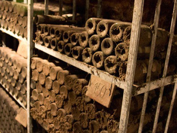Old Bottles in the Schloss Gobelsburg Cellar