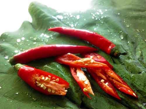 20120302-195511-stir-fried-clams-chilies.jpg