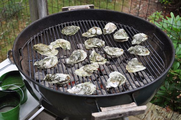 20110829-entertaining-bbqoysters-primary.jpg