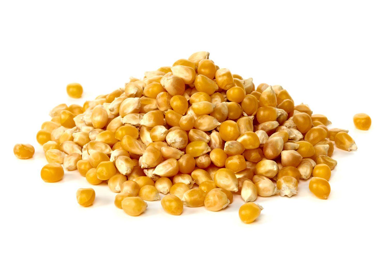 20140203-grains-corn.jpg