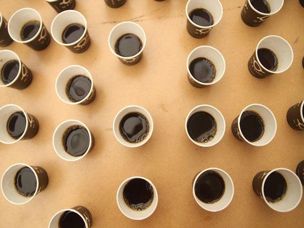 lotsofcoffee.jpg