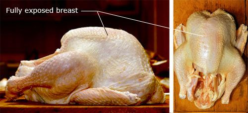 Notated image of turkey demonstrating cooking challenges