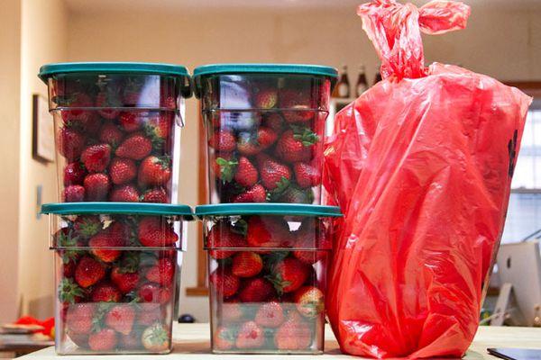 20130515-strawberry-buckets.jpg