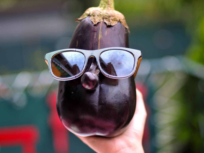 20140716-eggplant-rolls-eggplant-with-sunglasses-joshua-bousel.jpg