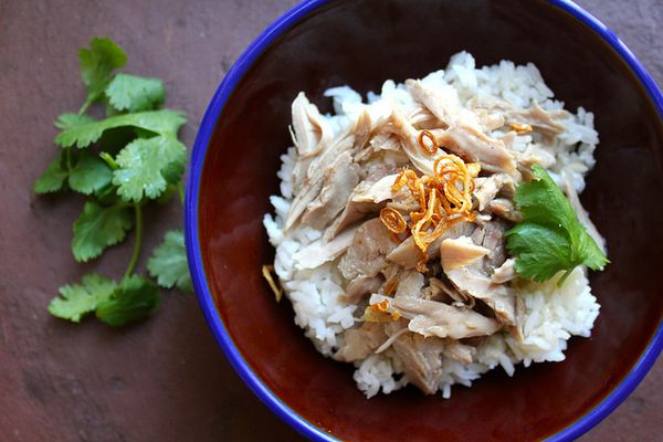 Taiwanese turkey rice topped with fried shallots and cilantro, in a red and blue bowl.