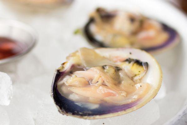 20150608-clams-closeup.jpg