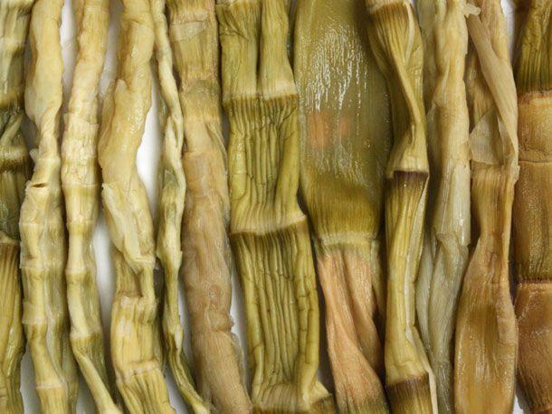 20100903-seriouslyasian-bamboo.jpg