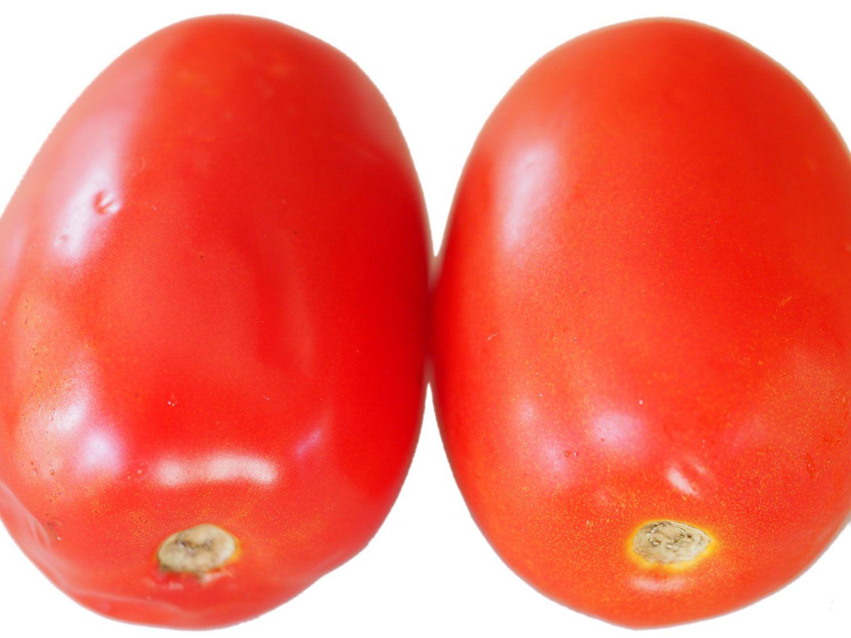 20140719-tomato-test-plum-together-daniel-gritzer.JPG
