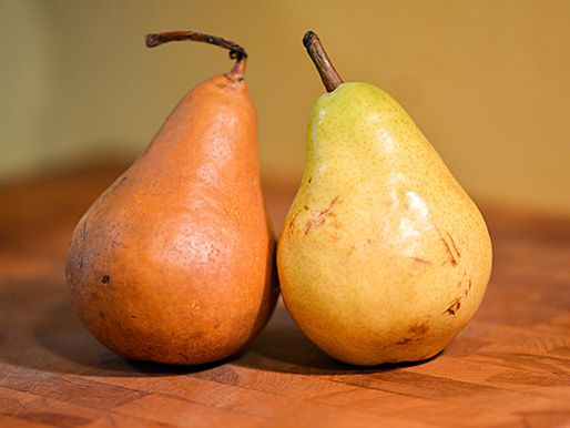 20131209-276483-pear-and-ginger-preserves-pear.jpg