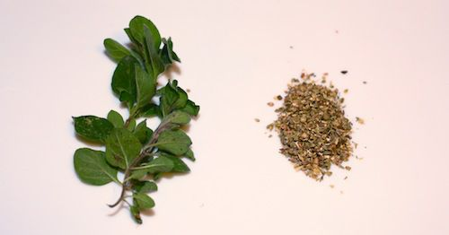 Photo showing a fresh oregano sprig and a pile of dried oregano.