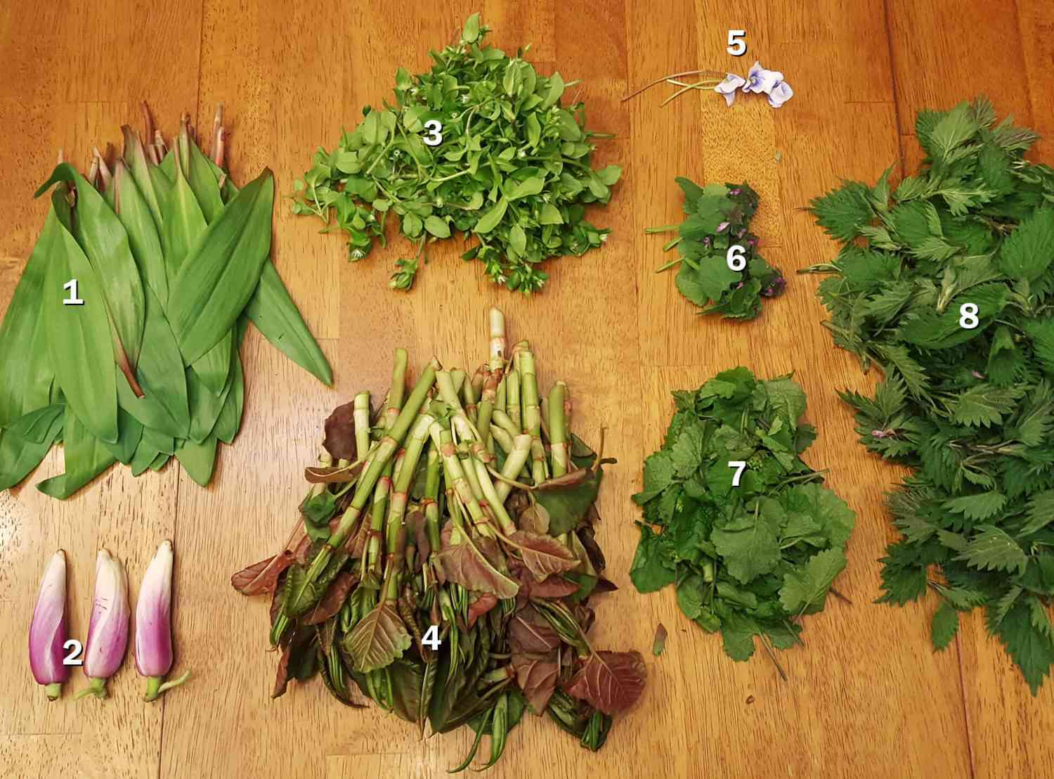Assortment of foraged greens