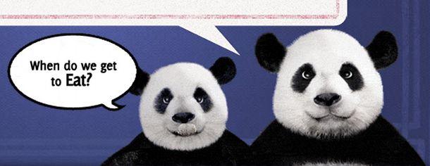 evil-pandas.jpg