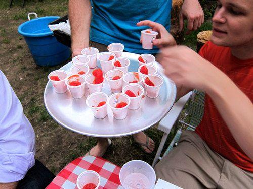 20100914-tomato-tasting-cups.jpg