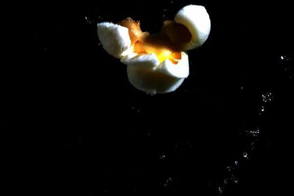20110221-modernist-cuisine-popcorn.jpg