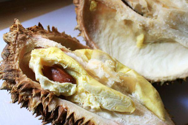 20101022-durian-primary.jpg