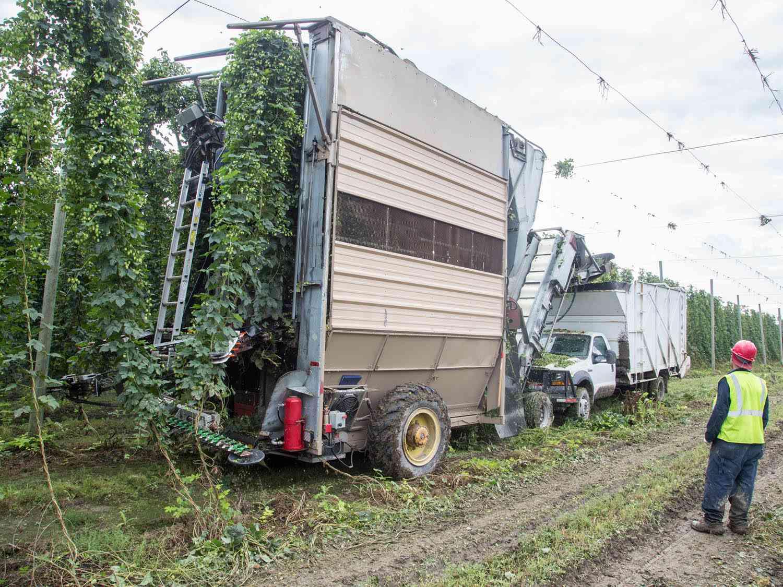 20140903-hop-farm-combine-rabi-abonour.jpg