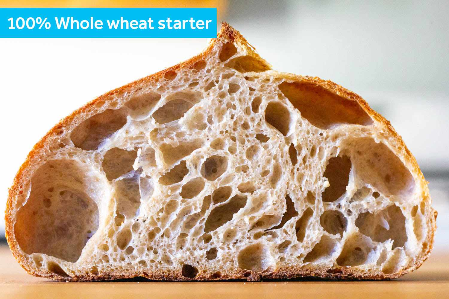 A cross section of the 100% whole wheat starter loaf