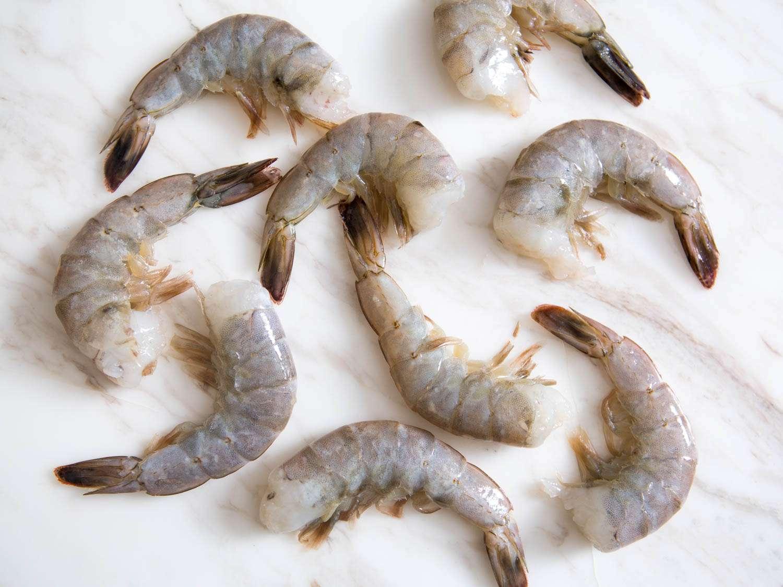20150806-shrimp-guide-vicky-wasikx-8.jpg