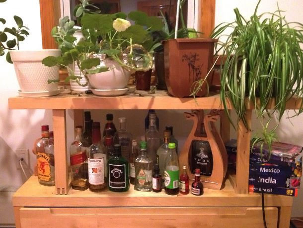 home bar with plants