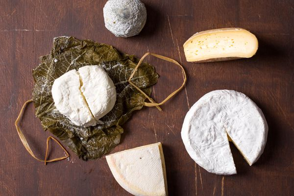 20141021-cheese101-southern-cheese-vicky-wasik-16.jpg