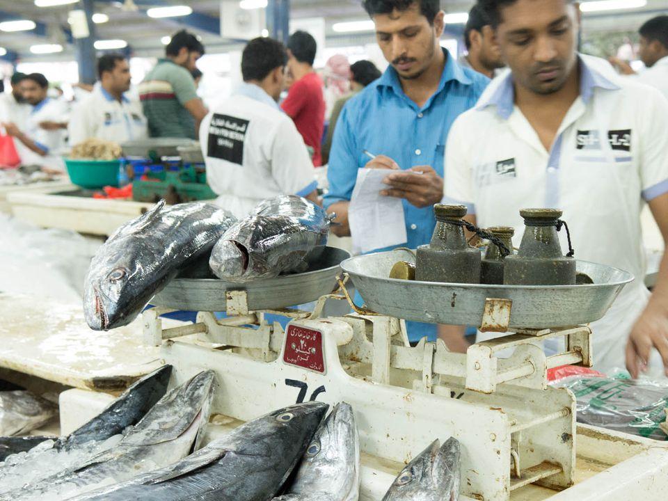 20140807-dubai-fish-market-weighing-naomi-bishop.jpg