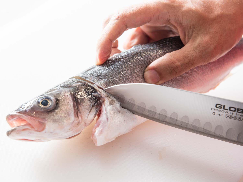 Santoku knife slicing into fish