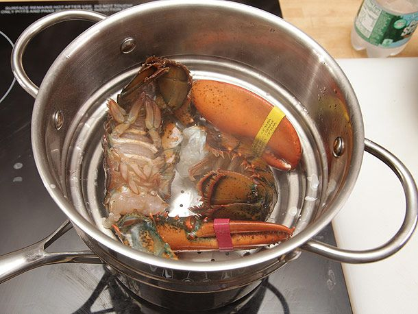 20130527-bacon-lobster-tomato-avocado-lettuce-sandwich-16.jpg