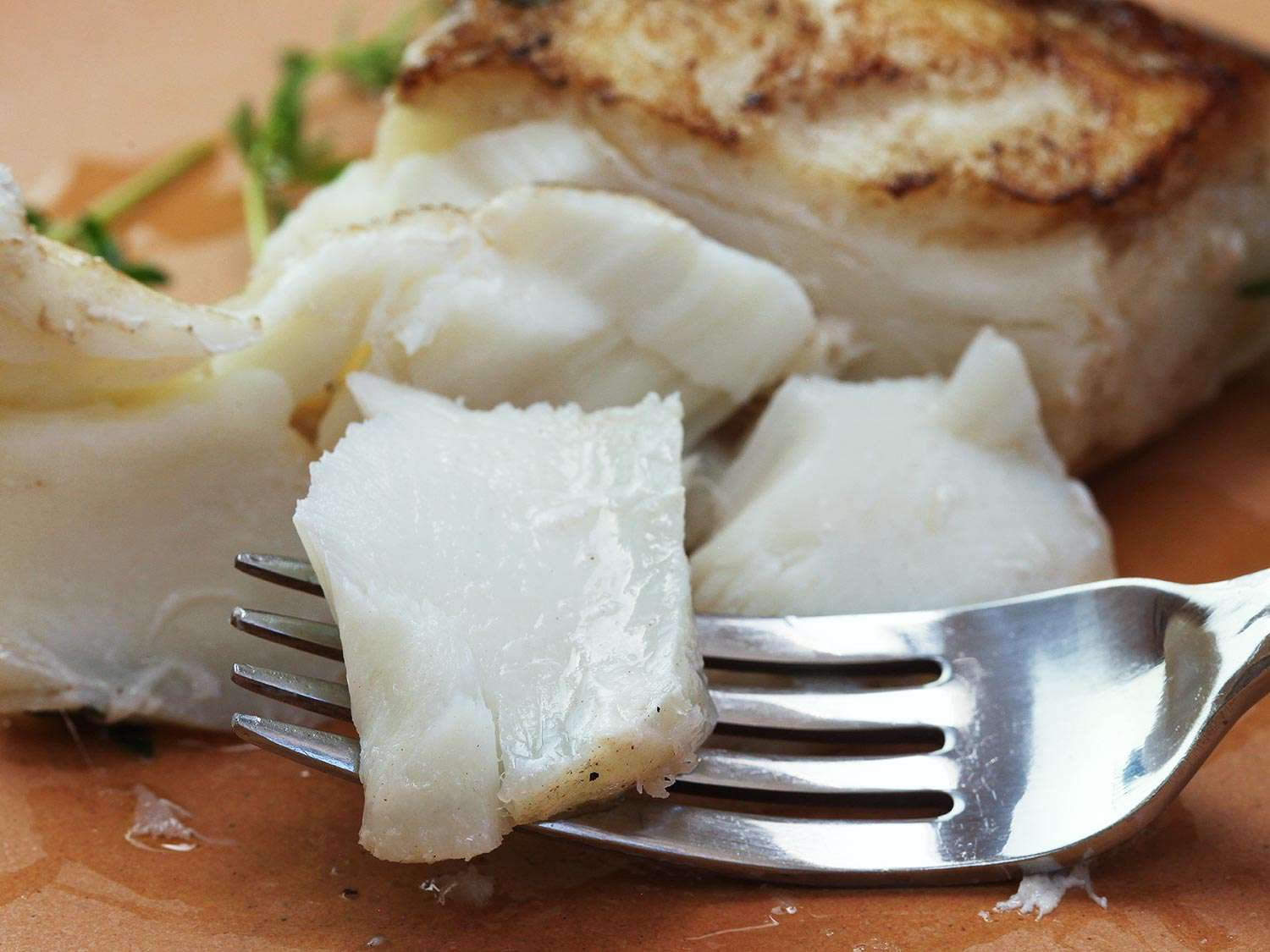 A fork picking up a piece of cooked halibut.